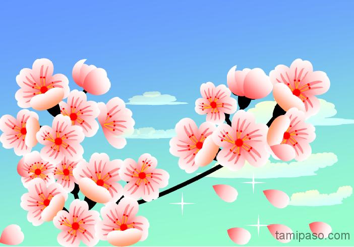 2015年桜さくら